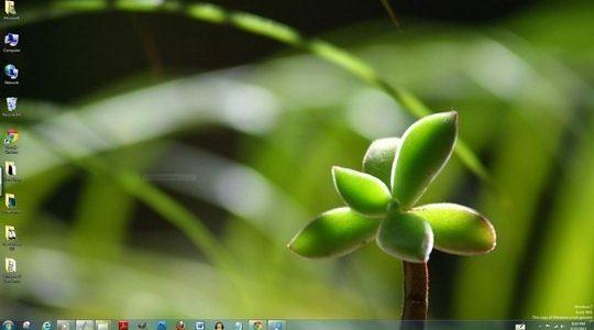 India Windows 7 Theme