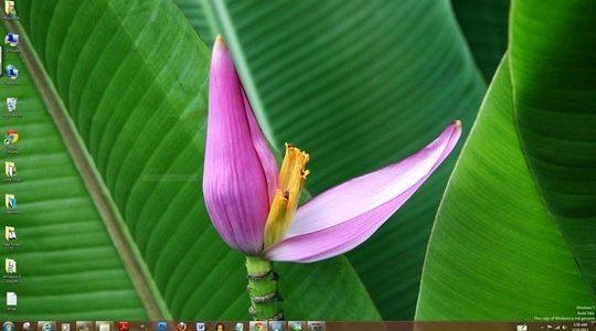 Lugares Coloridos Windows 7 Theme With Nice Sounds